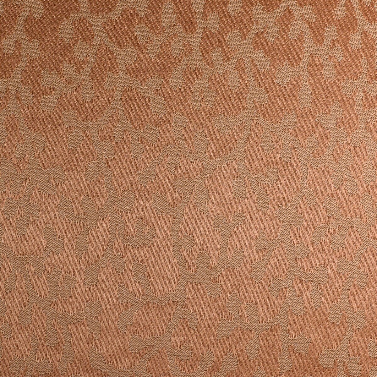 Peach Damask Solid